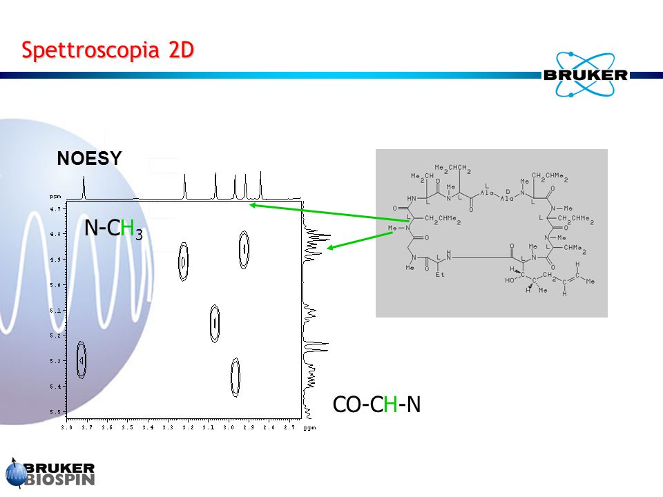Spettroscopia 2D NOESY N-CH3 CO-CH-N
