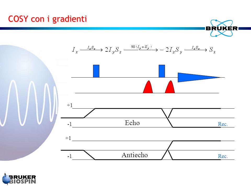 COSY con i gradienti +1 Echo -1 Rec. +1 Antiecho -1 Rec.