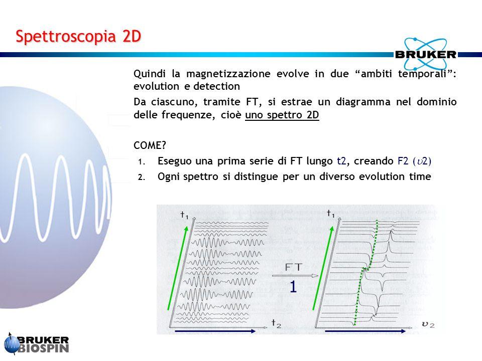 Spettroscopia 2D Quindi la magnetizzazione evolve in due ambiti temporali : evolution e detection.