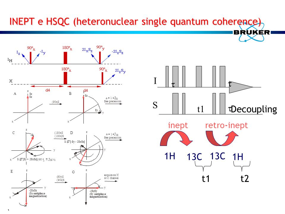 INEPT e HSQC (heteronuclear single quantum coherence)