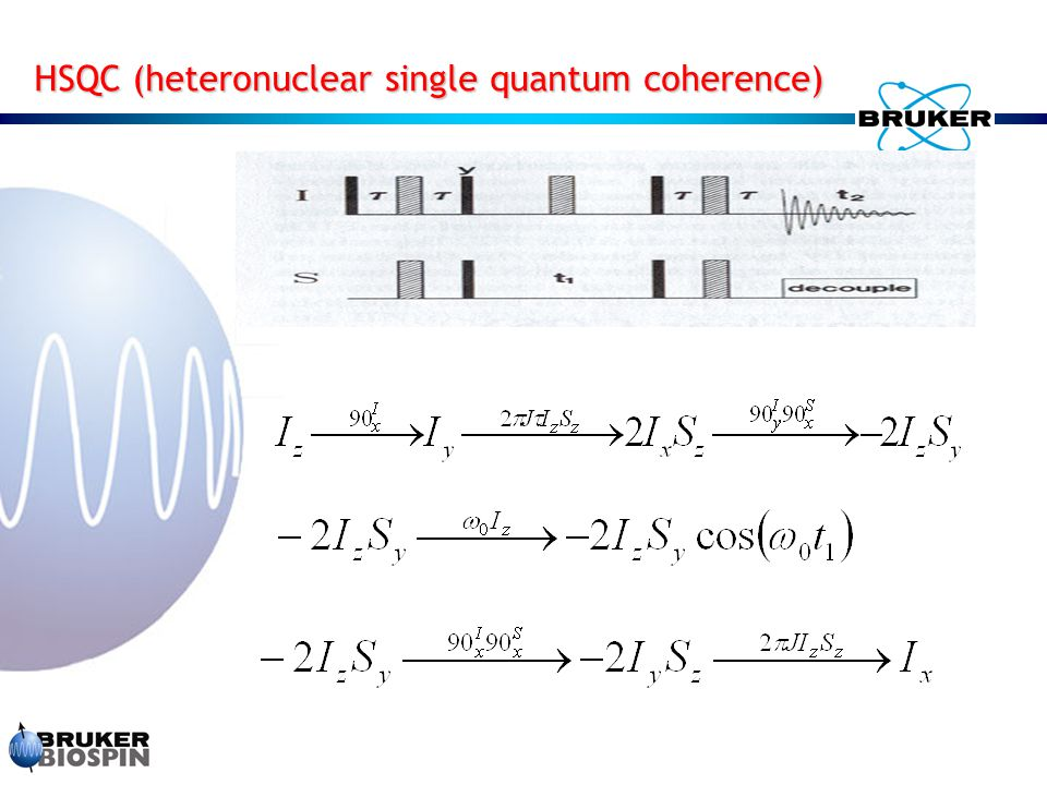 HSQC (heteronuclear single quantum coherence)