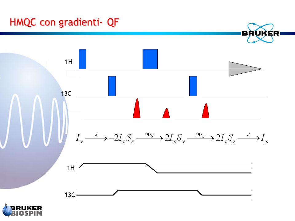 HMQC con gradienti- QF 1H 13C 1H 13C