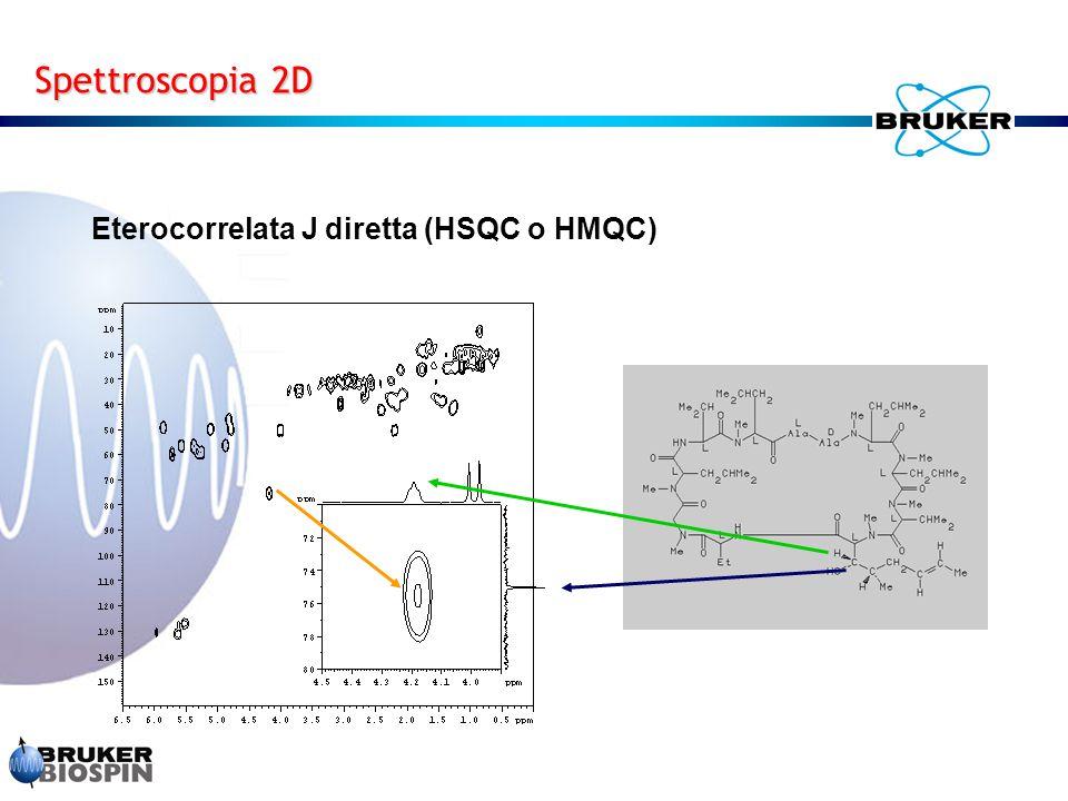 Spettroscopia 2D Eterocorrelata J diretta (HSQC o HMQC)