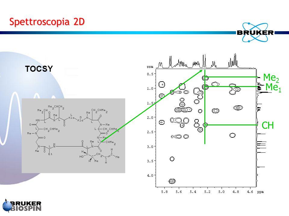 Spettroscopia 2D TOCSY CH Me2 Me1