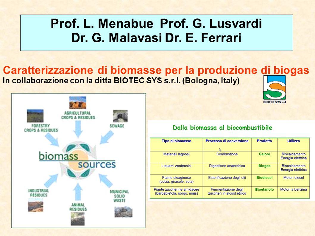 Prof. L. Menabue Prof. G. Lusvardi Dr. G. Malavasi Dr. E. Ferrari
