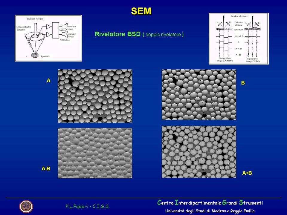 SEM Rivelatore BSD ( doppio rivelatore )