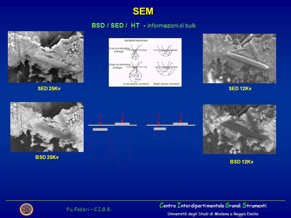 SEM BSD / SED / HT - informazioni di bulk