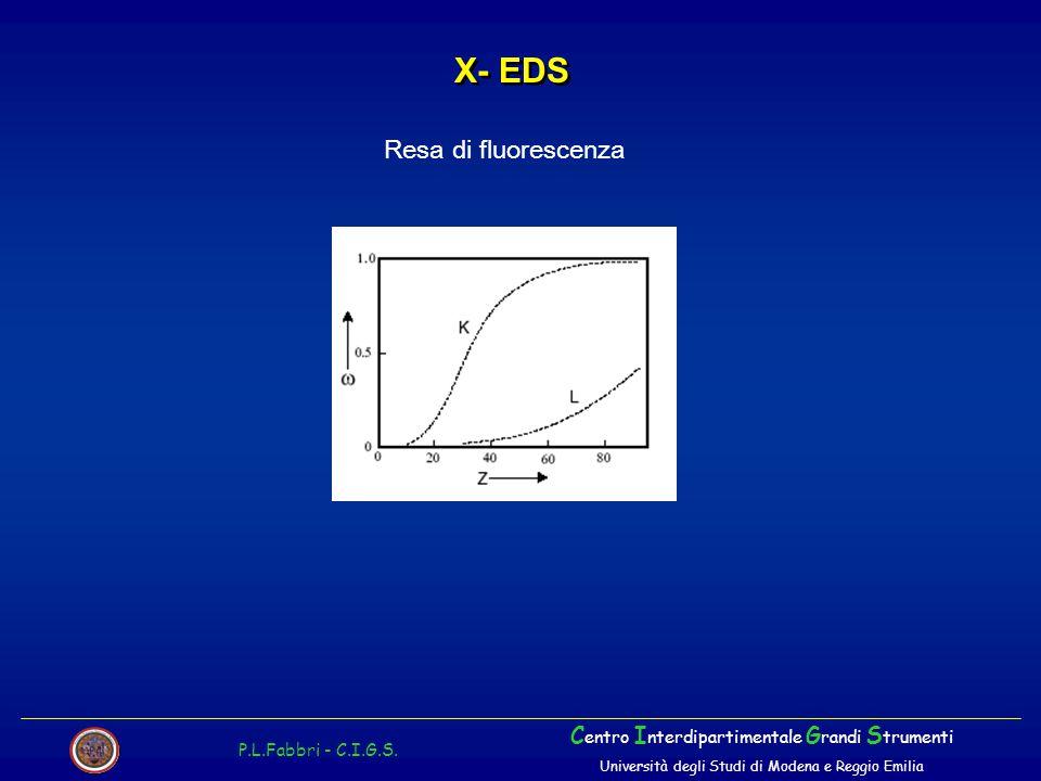 X- EDS Resa di fluorescenza