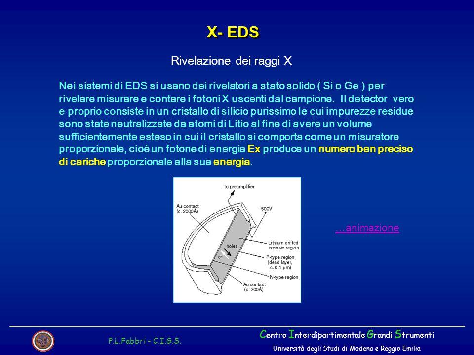 X- EDS Rivelazione dei raggi X