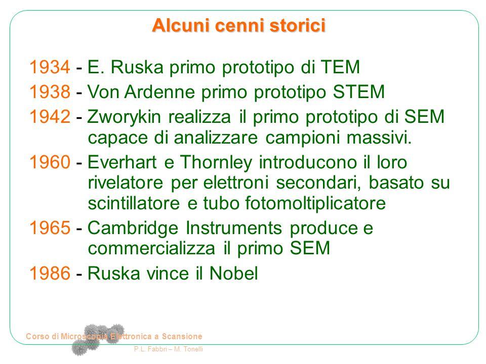 Corso di Microscopia Elettronica a Scansione