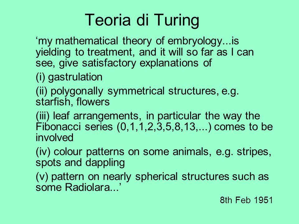 Teoria di Turing