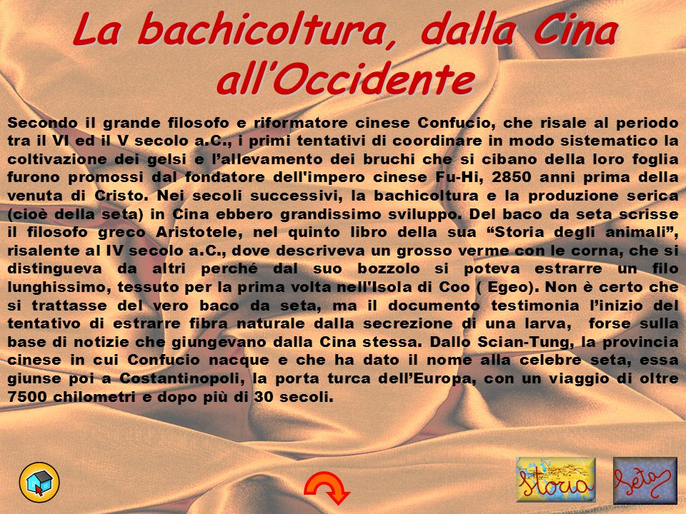 La bachicoltura, dalla Cina all'Occidente
