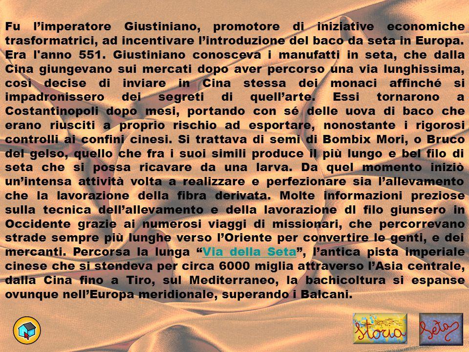 Fu l'imperatore Giustiniano, promotore di iniziative economiche trasformatrici, ad incentivare l'introduzione del baco da seta in Europa.