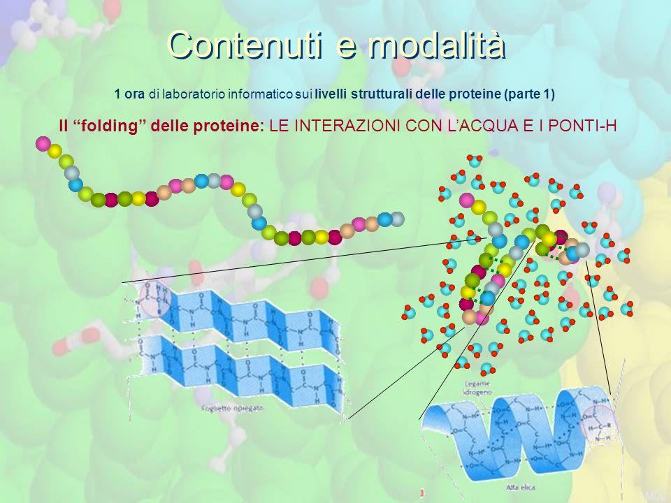 Contenuti e modalità 1 ora di laboratorio informatico sui livelli strutturali delle proteine (parte 1)