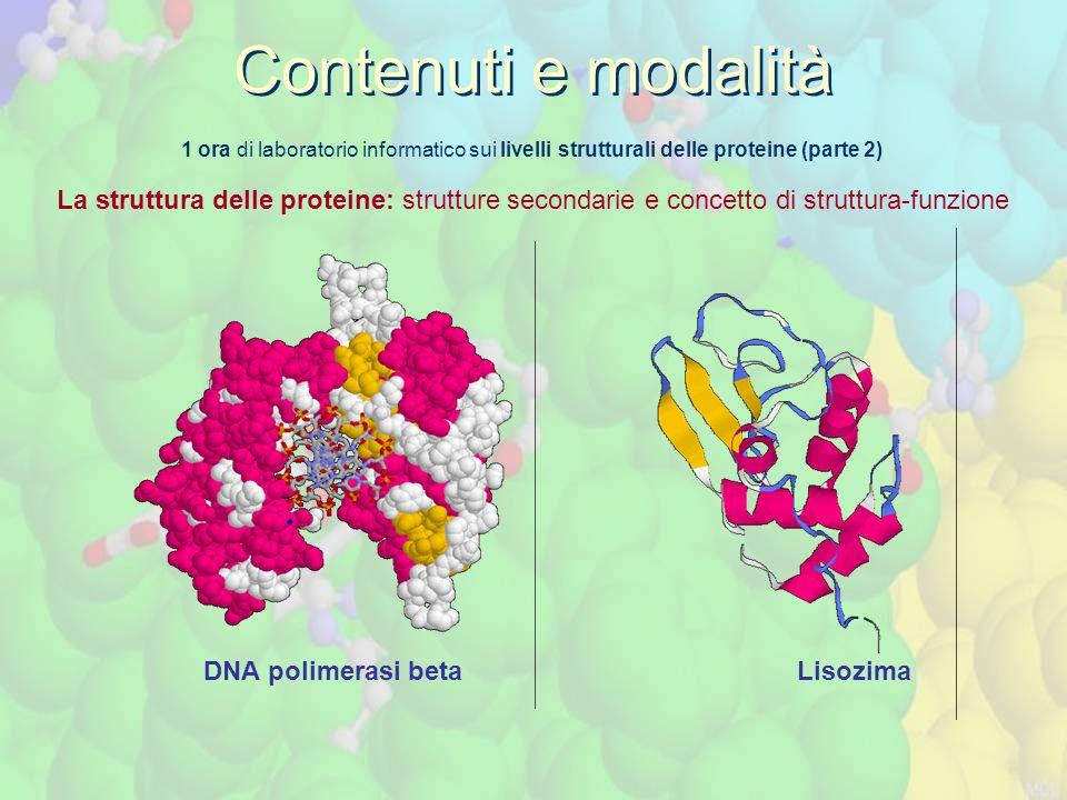 Contenuti e modalità 1 ora di laboratorio informatico sui livelli strutturali delle proteine (parte 2)