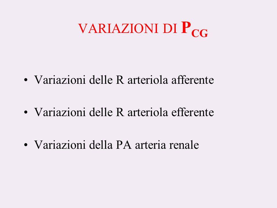 VARIAZIONI DI PCG Variazioni delle R arteriola afferente
