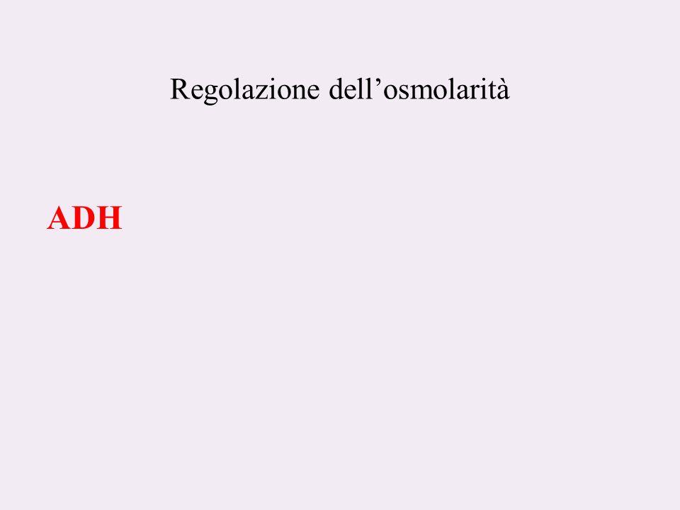 Regolazione dell'osmolarità