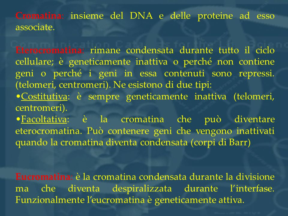 Cromatina: insieme del DNA e delle proteine ad esso associate.
