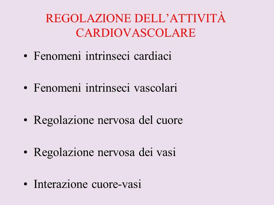 REGOLAZIONE DELL'ATTIVITÀ CARDIOVASCOLARE