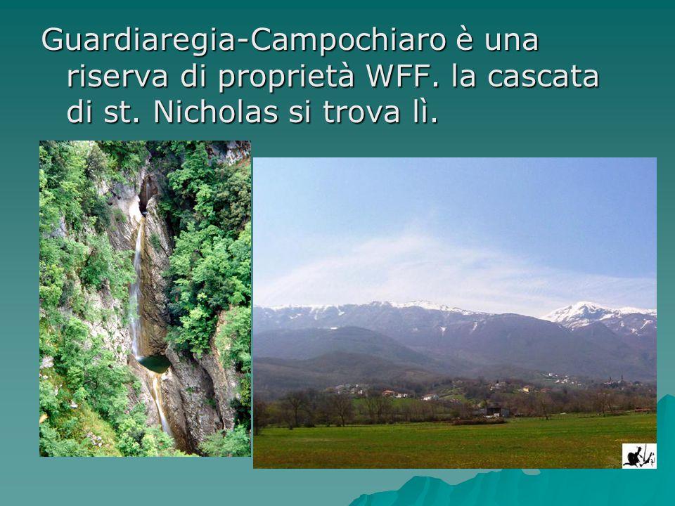 Guardiaregia-Campochiaro è una riserva di proprietà WFF