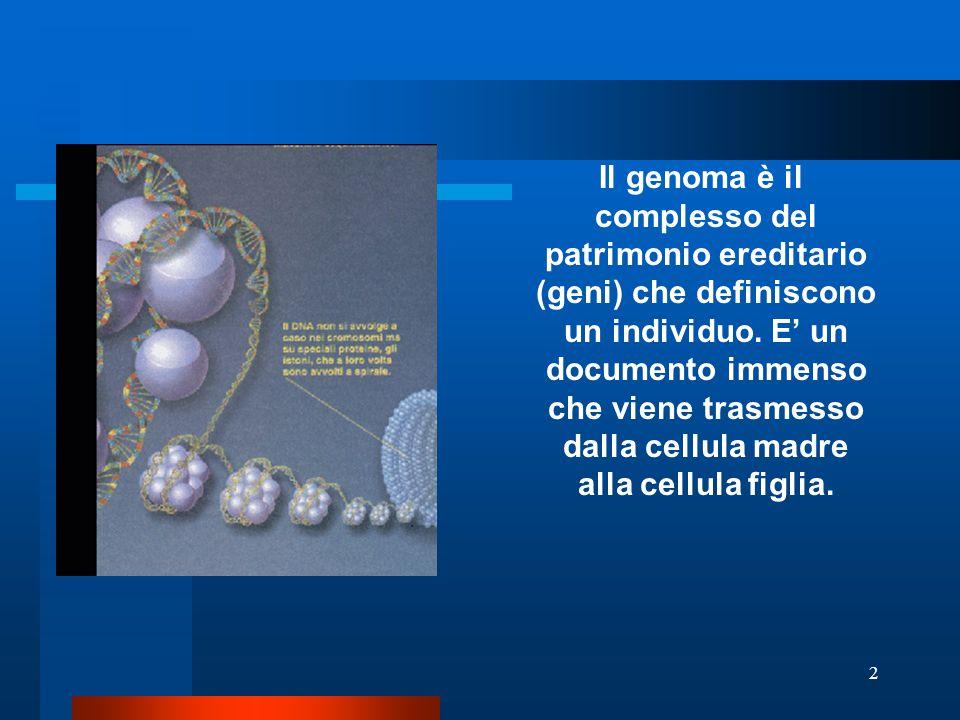 Il genoma è il complesso del patrimonio ereditario (geni) che definiscono un individuo.