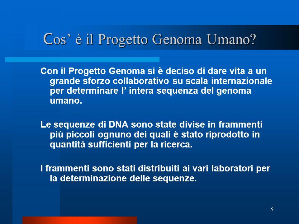 Cos' è il Progetto Genoma Umano