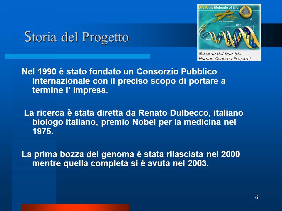 Storia del Progetto Nel 1990 è stato fondato un Consorzio Pubblico Internazionale con il preciso scopo di portare a termine l' impresa.