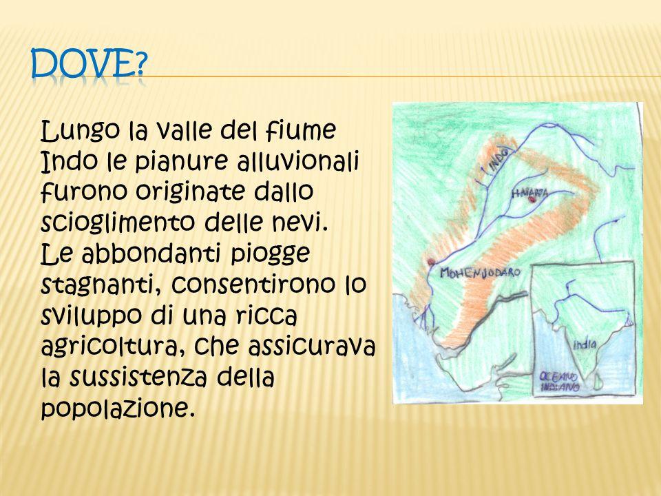 Dove Lungo la valle del fiume Indo le pianure alluvionali furono originate dallo scioglimento delle nevi.