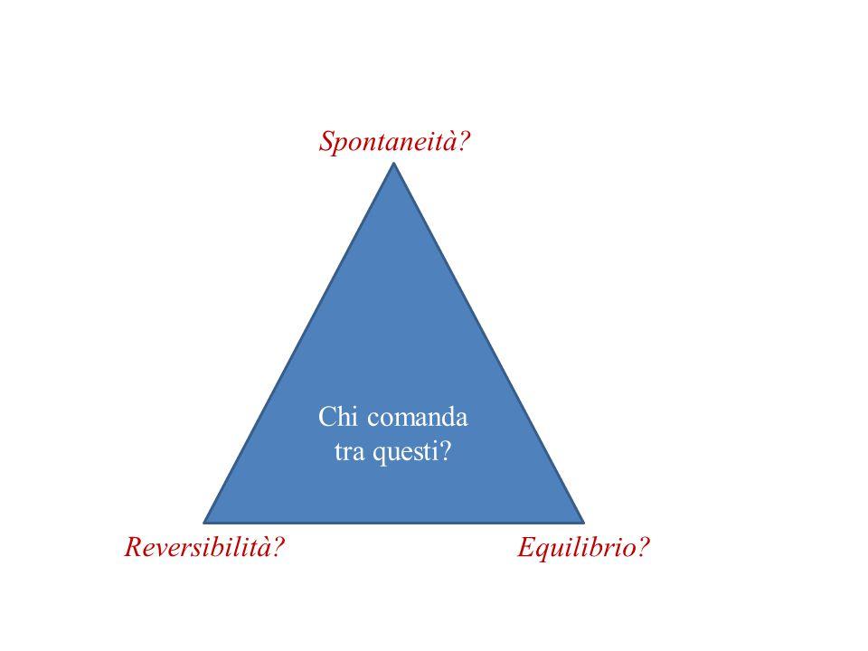 Spontaneità Chi comanda tra questi Reversibilità Equilibrio