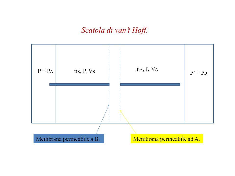 Scatola di van't Hoff. nA, P, VA P = PA nB, P, VB P' = PB
