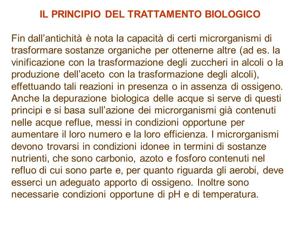 IL PRINCIPIO DEL TRATTAMENTO BIOLOGICO
