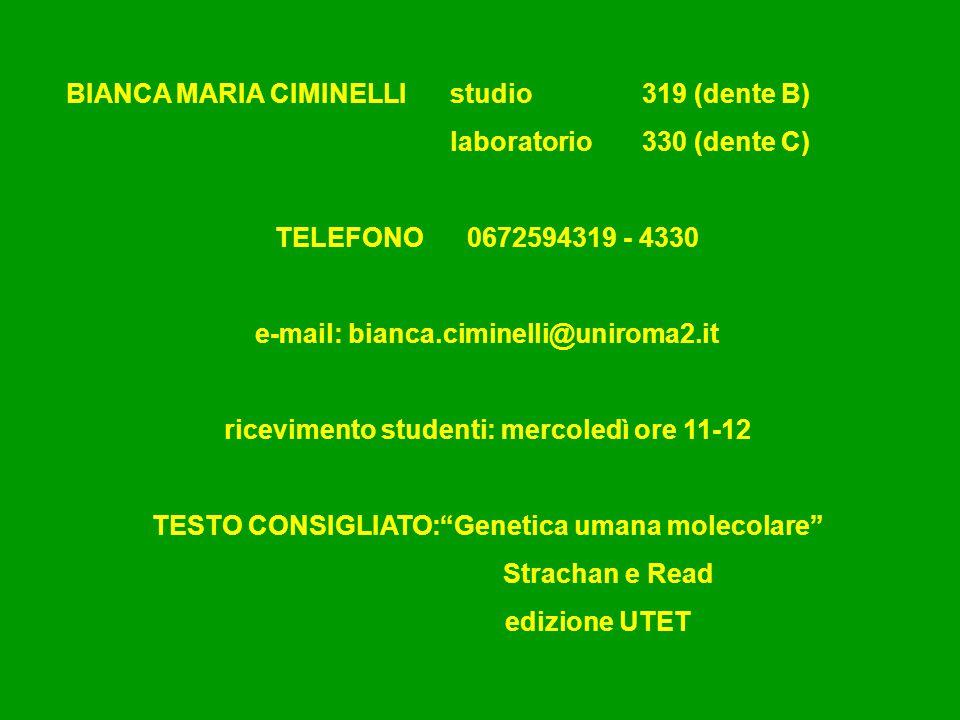 BIANCA MARIA CIMINELLI studio 319 (dente B) laboratorio 330 (dente C)