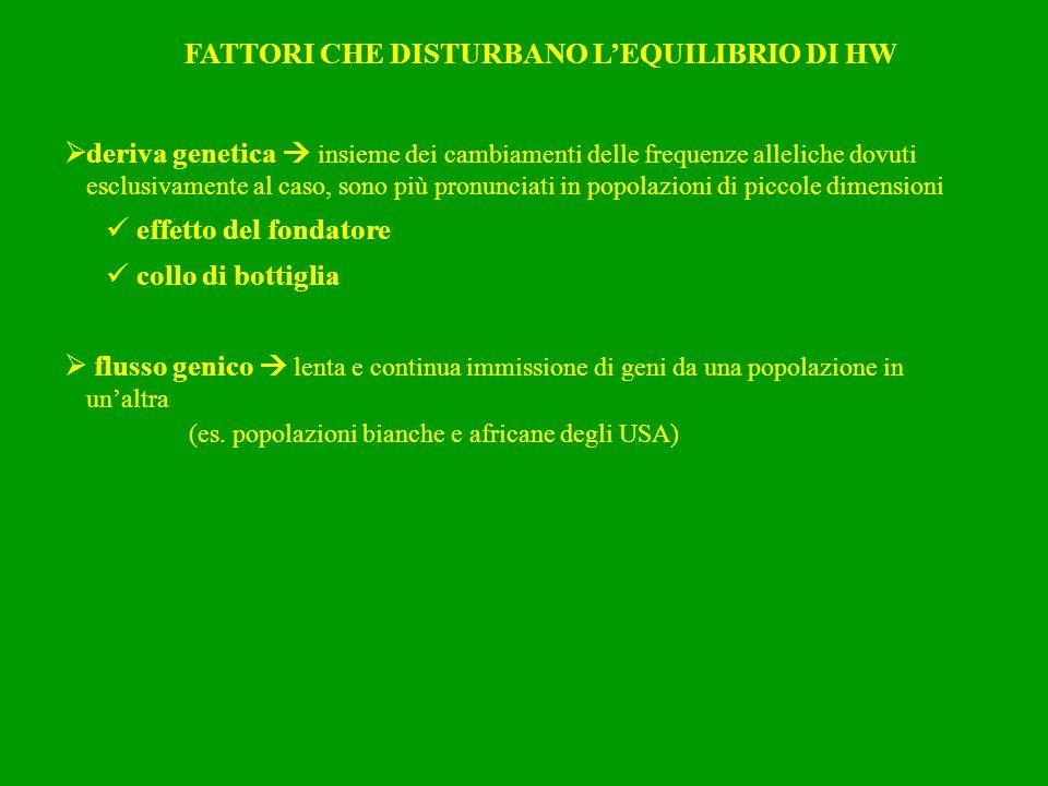 FATTORI CHE DISTURBANO L'EQUILIBRIO DI HW