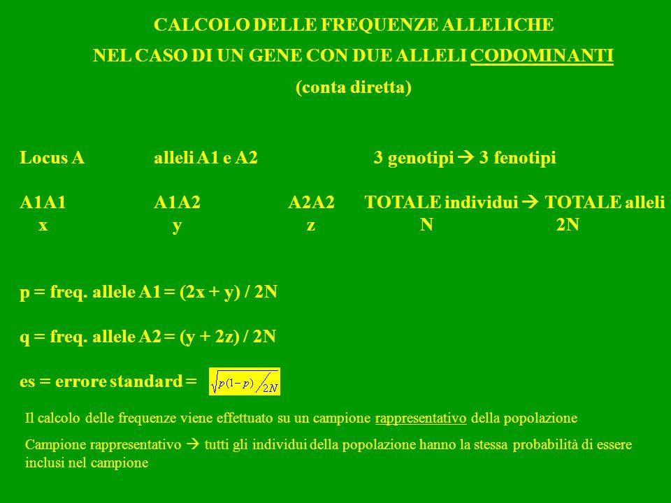 CALCOLO DELLE FREQUENZE ALLELICHE