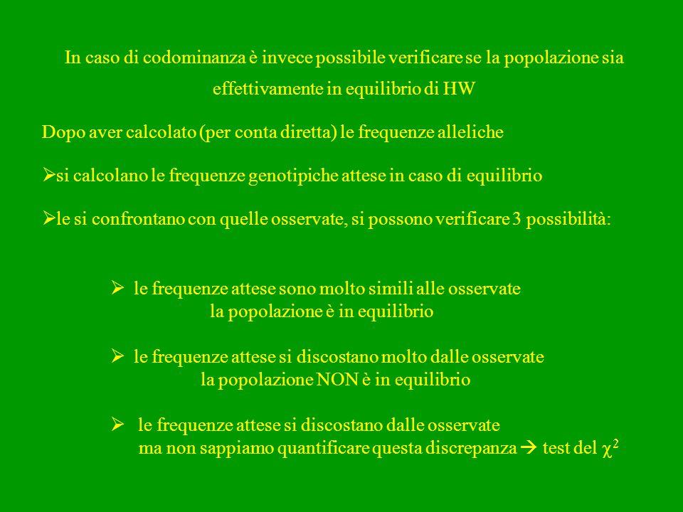 In caso di codominanza è invece possibile verificare se la popolazione sia effettivamente in equilibrio di HW