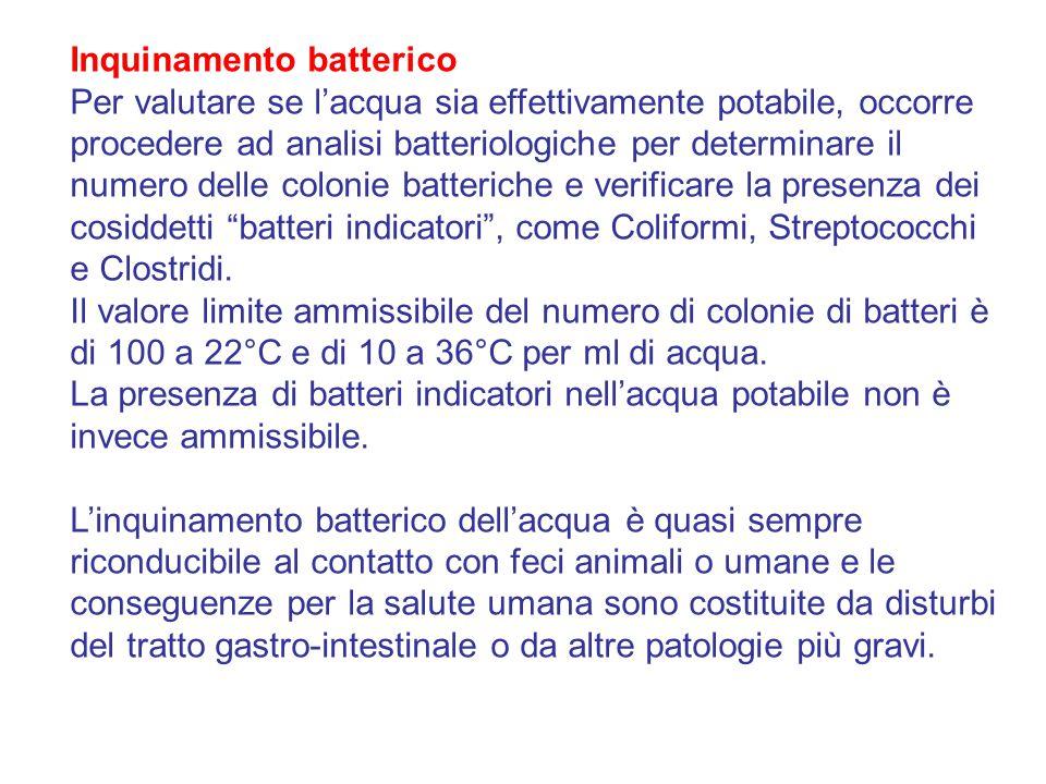 Inquinamento batterico