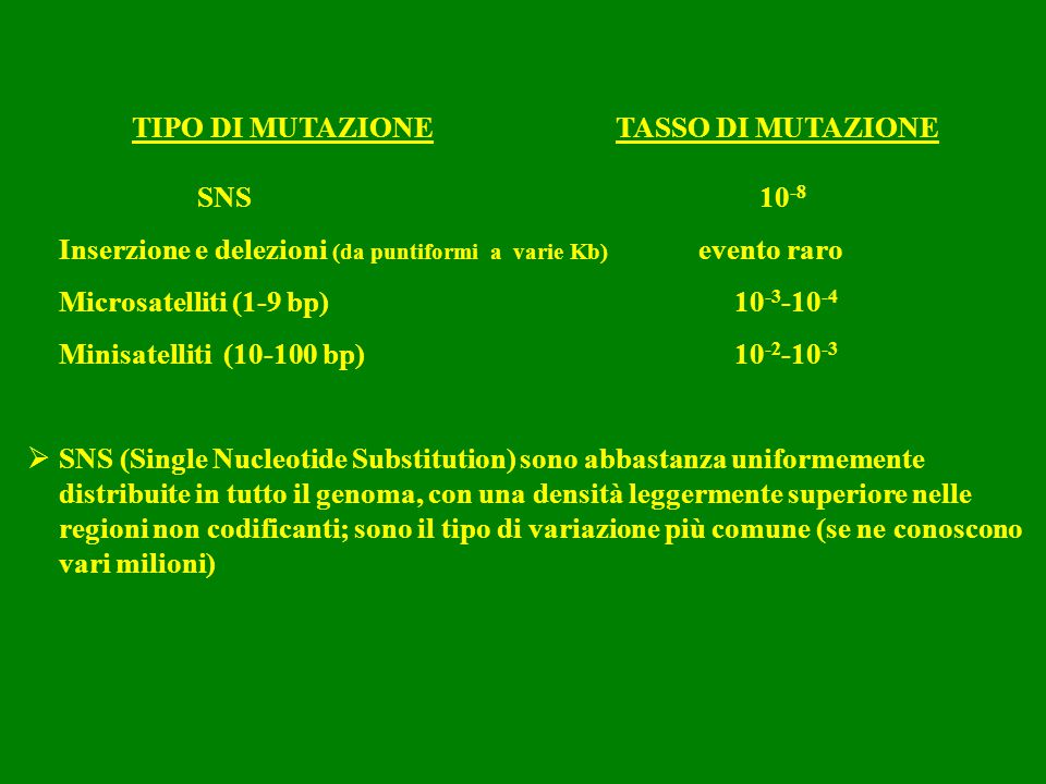 TIPO DI MUTAZIONE TASSO DI MUTAZIONE