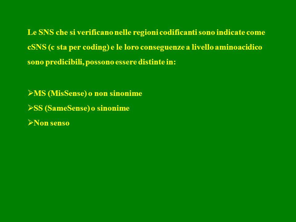 Le SNS che si verificano nelle regioni codificanti sono indicate come cSNS (c sta per coding) e le loro conseguenze a livello aminoacidico sono predicibili, possono essere distinte in: