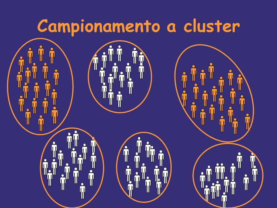 Campionamento a cluster