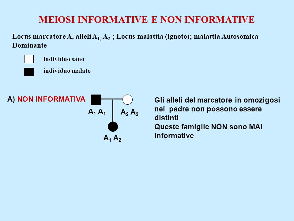 MEIOSI INFORMATIVE E NON INFORMATIVE