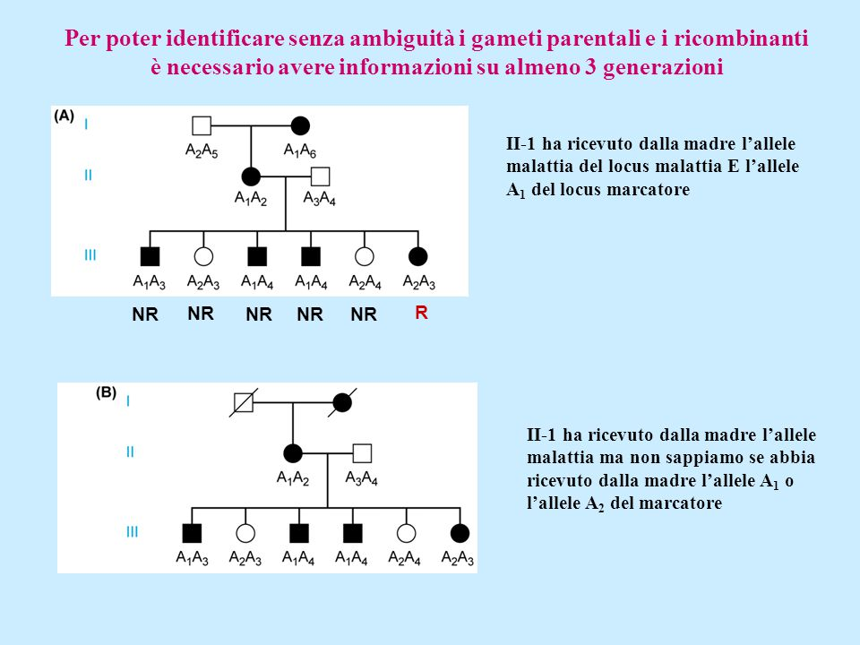 Per poter identificare senza ambiguità i gameti parentali e i ricombinanti è necessario avere informazioni su almeno 3 generazioni