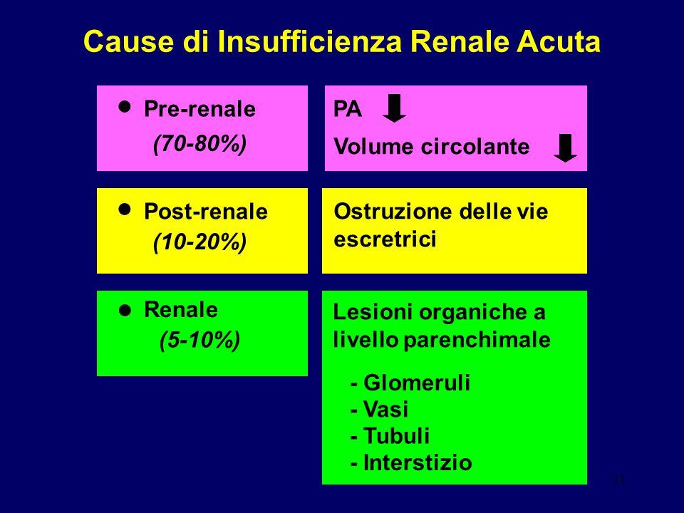 Cause di Insufficienza Renale Acuta
