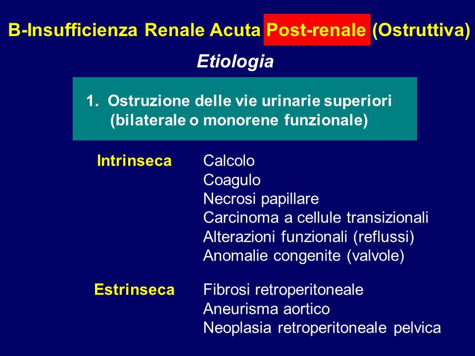 B-Insufficienza Renale Acuta Post-renale (Ostruttiva)