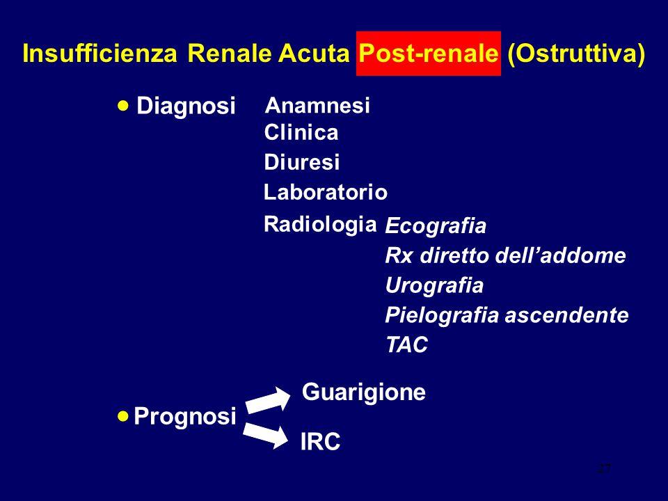 Insufficienza Renale Acuta Post-renale (Ostruttiva)