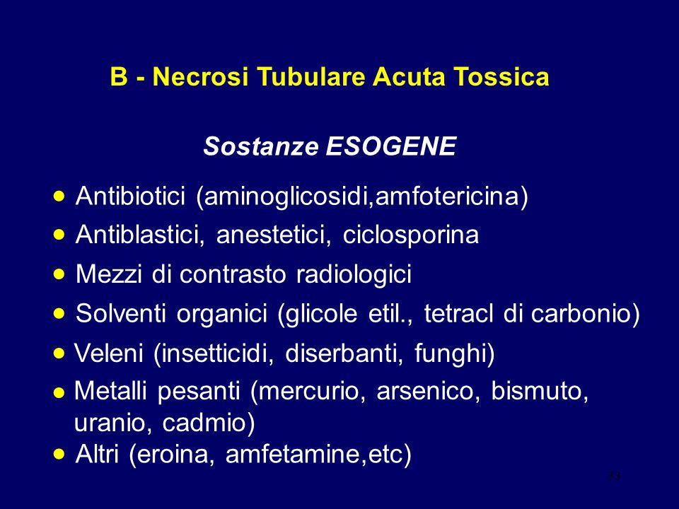 B - Necrosi Tubulare Acuta Tossica