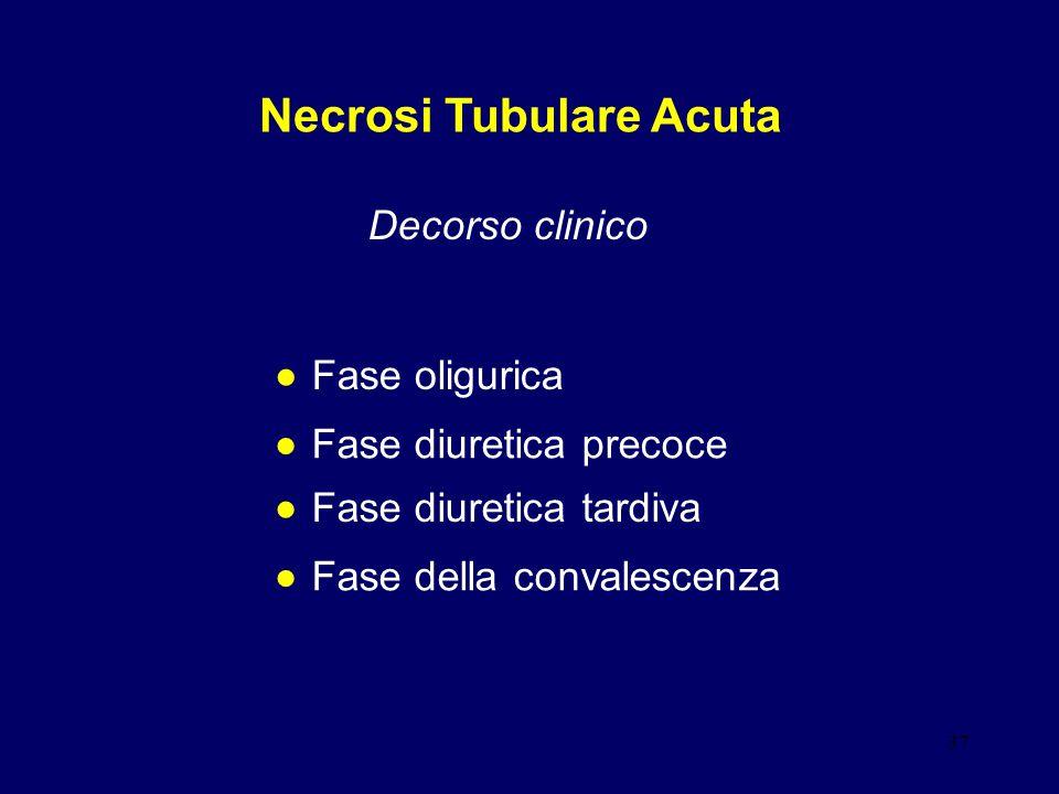 Necrosi Tubulare Acuta