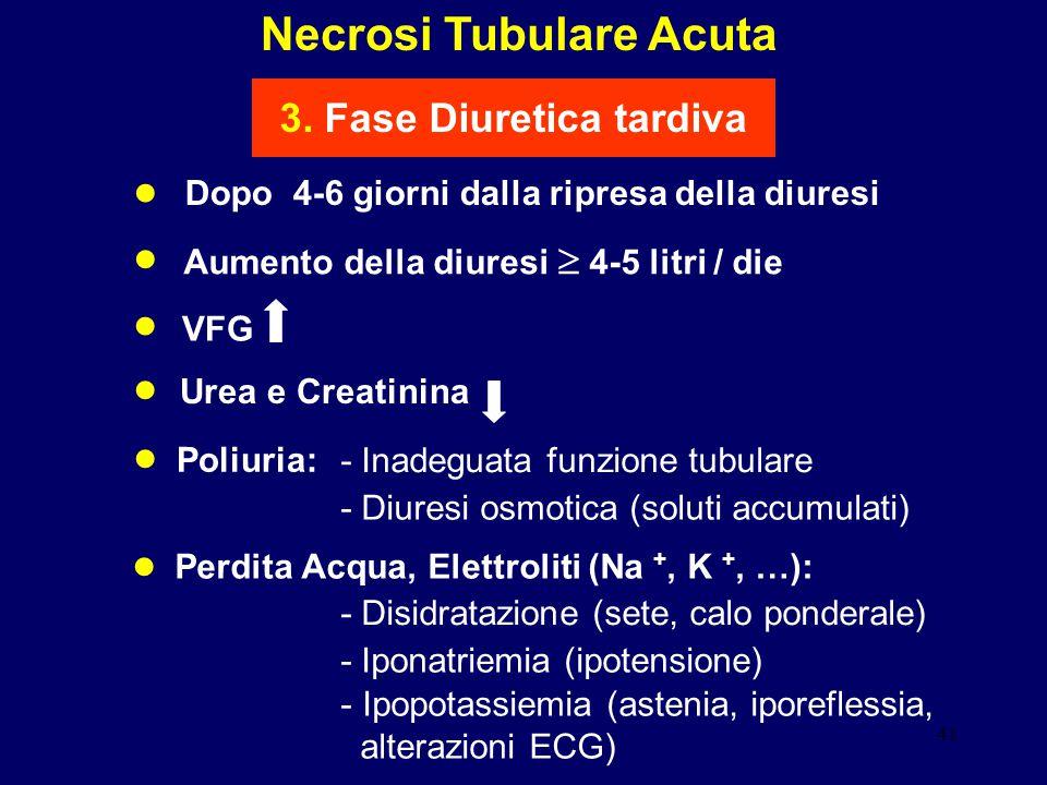 Necrosi Tubulare Acuta 3. Fase Diuretica tardiva