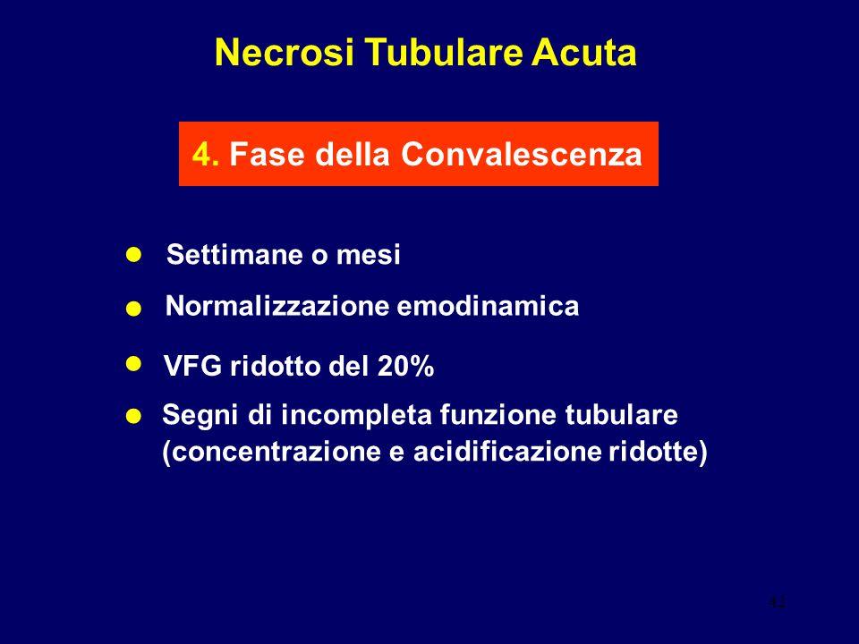 Necrosi Tubulare Acuta 4. Fase della Convalescenza
