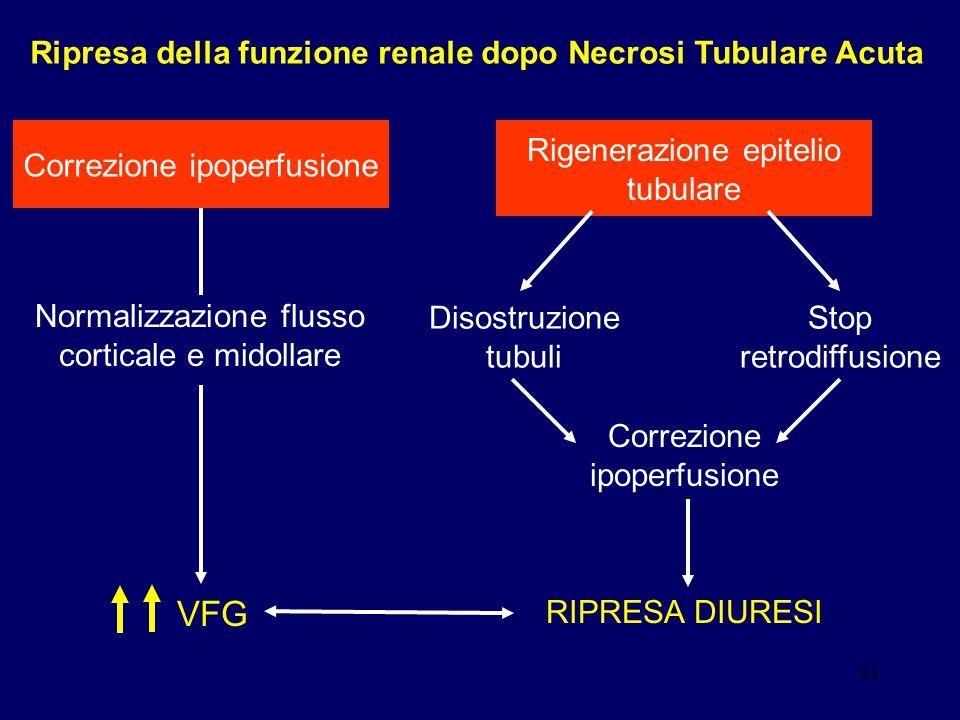 Ripresa della funzione renale dopo Necrosi Tubulare Acuta