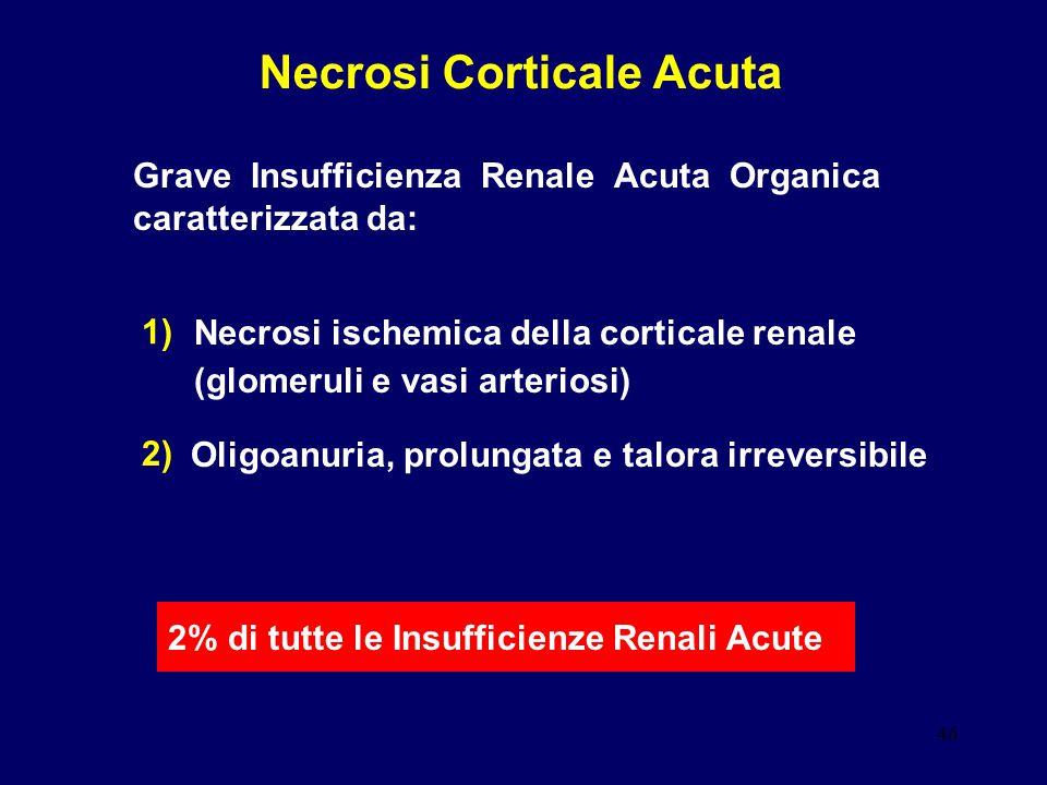 Necrosi Corticale Acuta